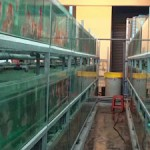 Diskus-Zucht Farm in Malaysia