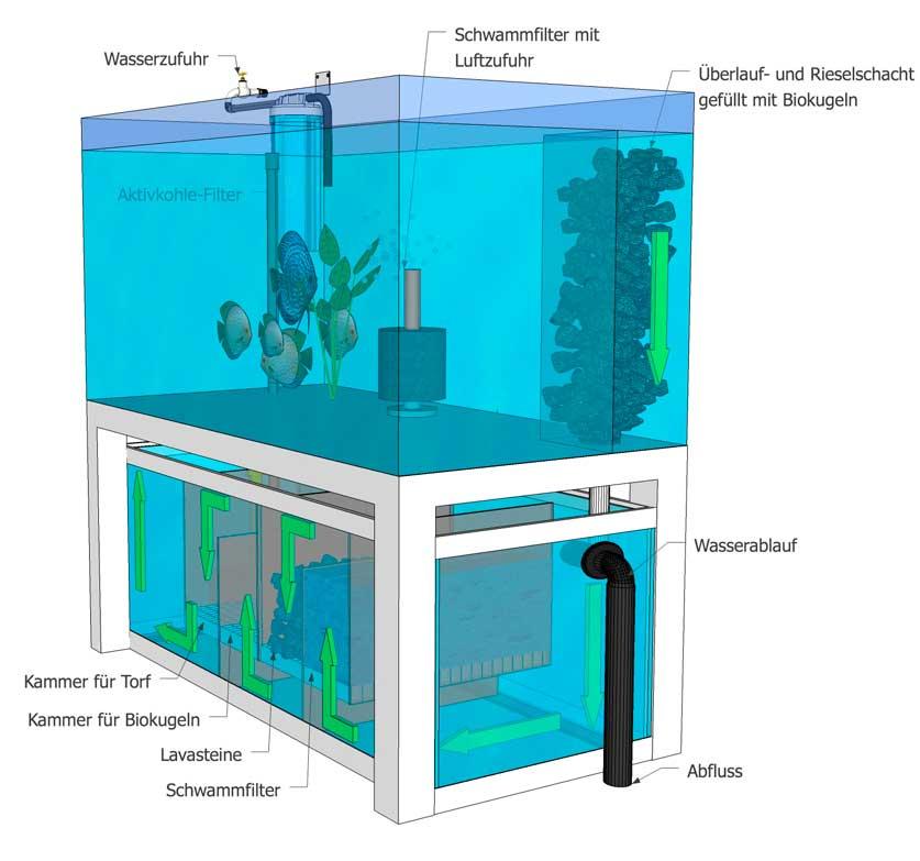 Diskus-Biofilter-Aquarium EuropaDiscusCenter Ansicht 1