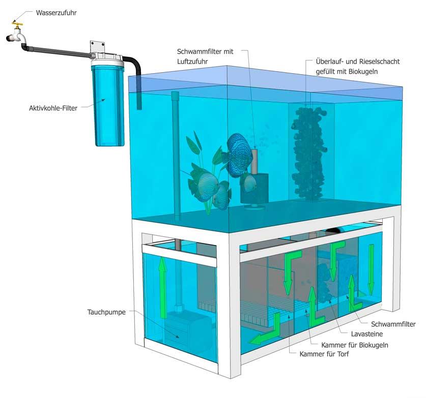 Diskus-Biofilter-Aquarium EuropaDiscusCenter Ansicht 2