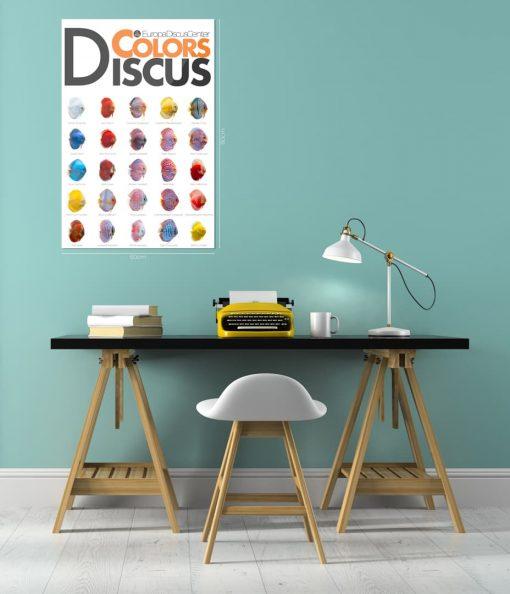 Diskus-Poster 2019 EuropaDiscusCenter 60cmx90cm